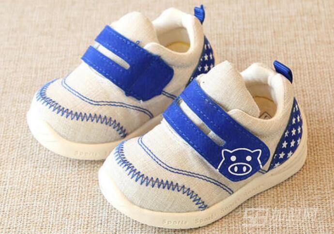 大派豬童鞋