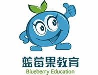 蓝莓果学前班加盟